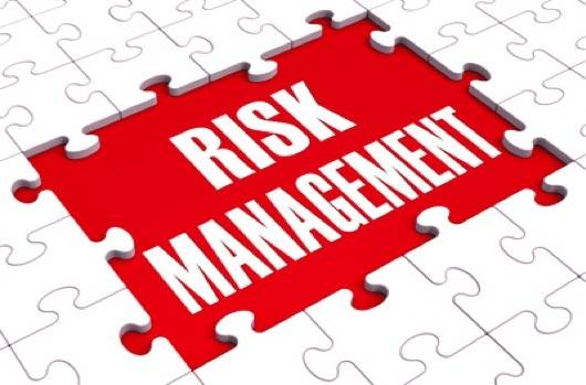 Risk management means fitting all the small parts together.