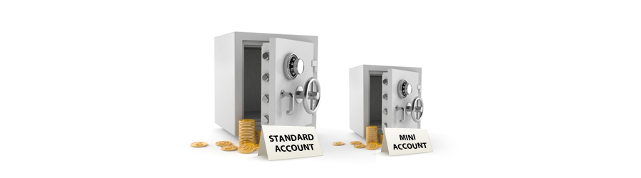 standard account and mini account safes